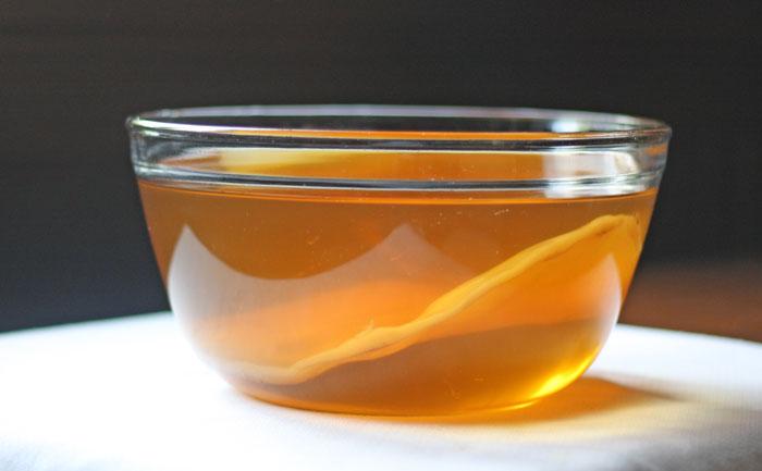 Медузомицет чайный гриб