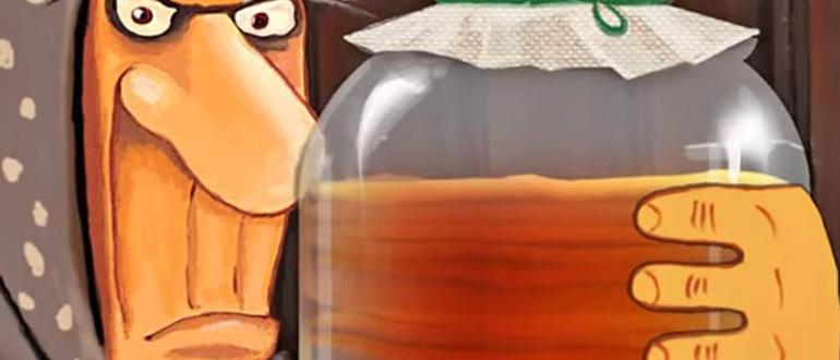 чайный гриб полезные свойства и противопоказания