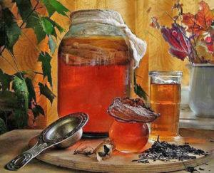 чайный гриб в Сибири