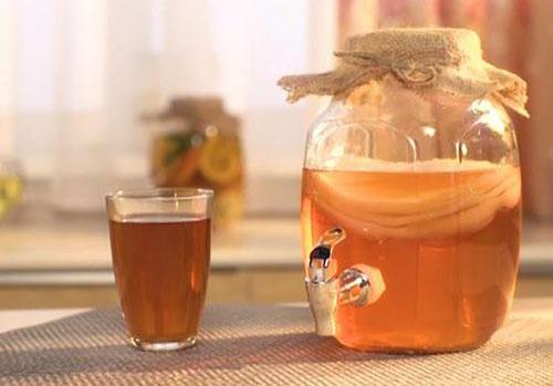 чайный гриб от Леомакс