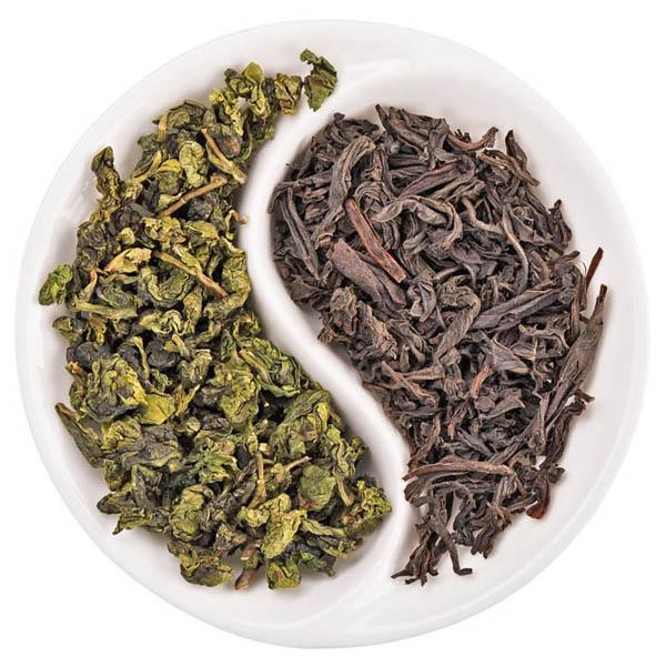 чай для чайного гриба