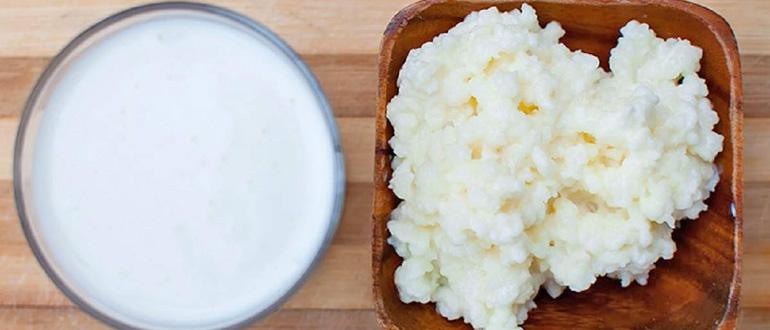 Что такое молочный гриб