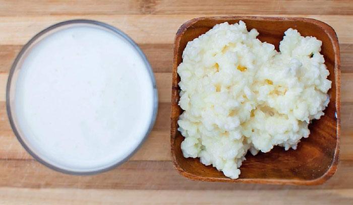что такое молочный, кефирный гриб